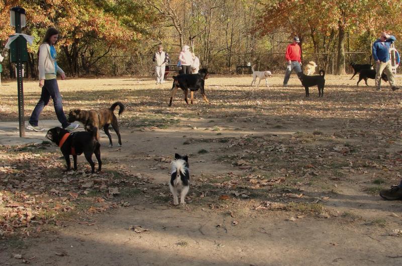 Mehlig Dog Park